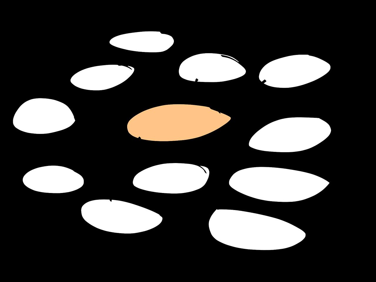 Mindmap Image via Pixabay - Quelle: Bild von Sandra Schön auf Pixabay